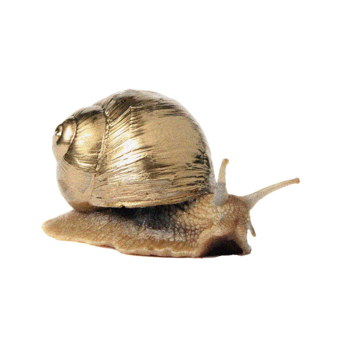 pauahtun scribes kunsthaus aarau gold snail