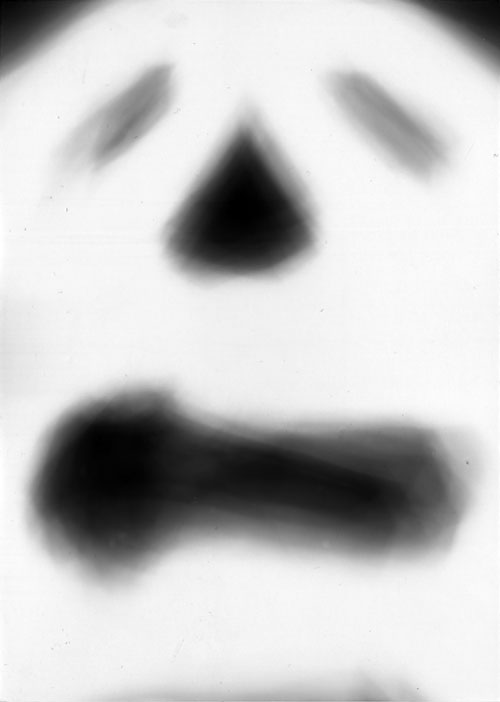 Photogram rayograph black and white ghost